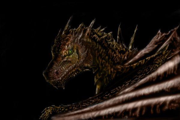 Un autre dragon